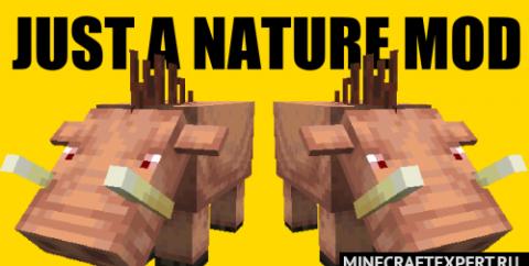 Just A Nature [1.16.5] — кабан и отшельник