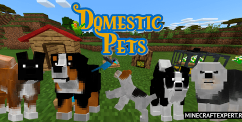Domestic Pets [1.16] — домашние животные