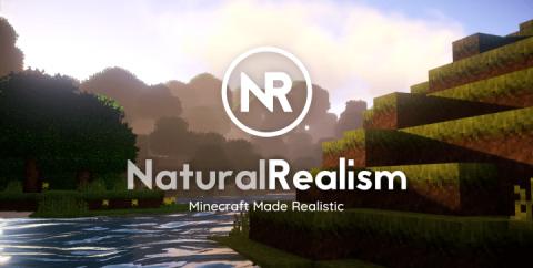 Natural Realism [1.16.3] [1.15.2] [1.12.2] (16x)