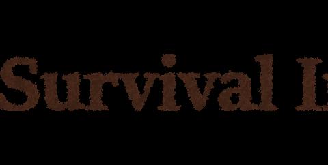 Survival Inc. [1.12.2] (хардкорное выживание)
