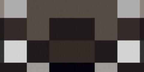 FurBandits [1.16.5] [1.15.2] — мод на енотов