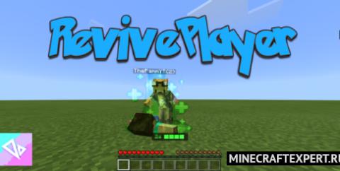 RevivePlayer [1.16] (возрождение игрока)