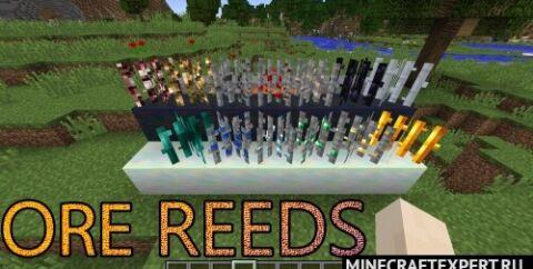 Ore Reeds [1.16.5] [1.15.2] [1.14.4] [1.12.2] (выращивание руды)