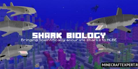 Shark Biology [1.16] [1.15] [1.14] (большие акулы)