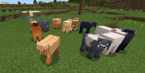 Genoa Cows [1.16] (разнообразные коровы)