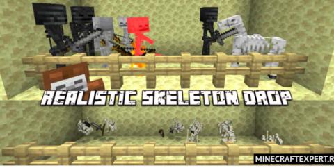 Realistic Skeleton Drop [1.17] — реалистичный дроп со скелетов
