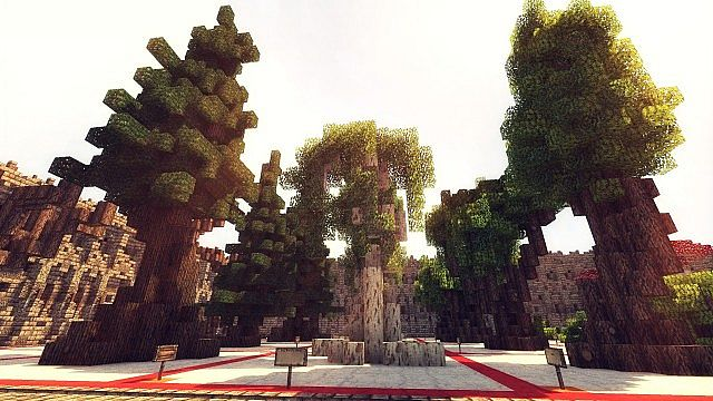 Tree-Bundle-Map-7