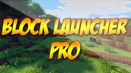 BlockLauncher Pro 1.12 (для 0.14.0)
