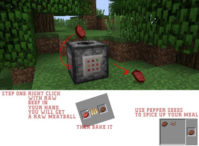 Spicy-Spices-Mod-6