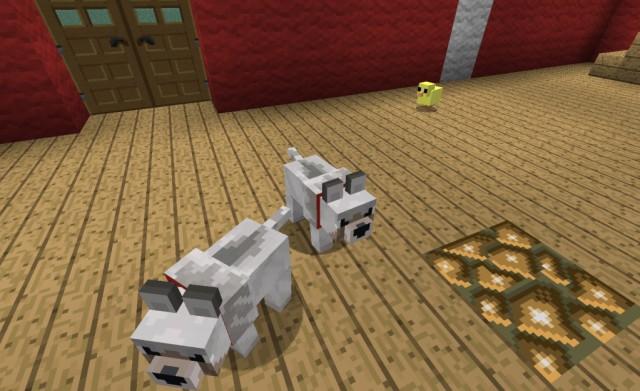 Baby-Animals-Mod-3