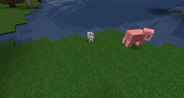 Baby-Animals-Mod-5
