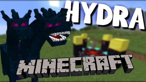 Hydra Map 1.8.9/1.8