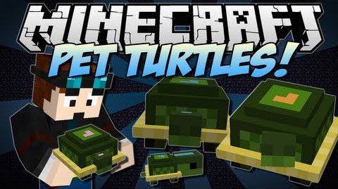 Pet Turtles Mod 1.7.10
