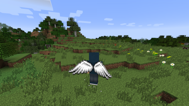 Cosmetic Wings [1.12.1] [1.11.2] [1.10.2] [1.7.10]