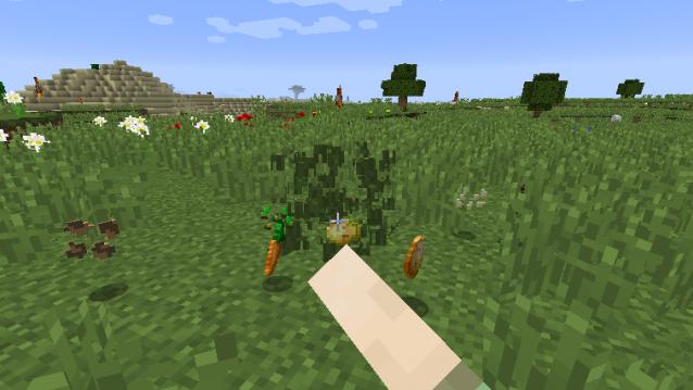 Seed Drop [1.11.2] [1.10.2] [1.9.4] [1.8.9]
