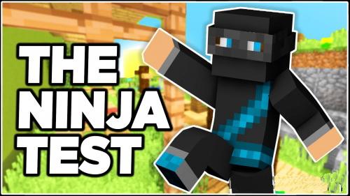 Are You a Ninja 2 [1.10.2]