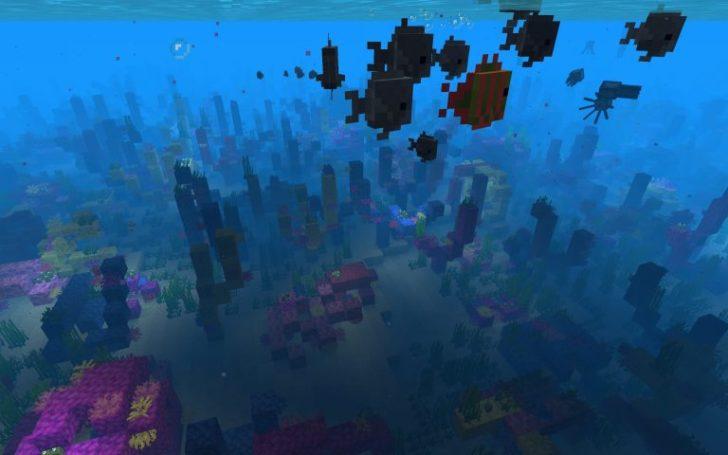 Сид - Коралловый риф рядом с маленьким островом [1.13]